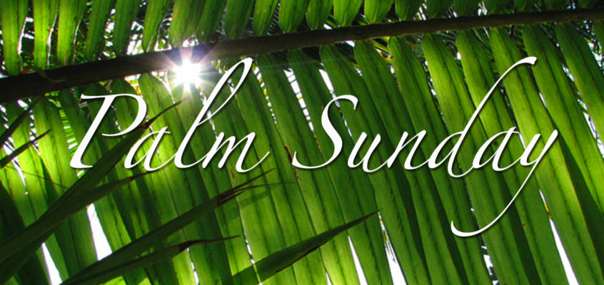 Episode 68: Palm Sunday with Christian Skoorsmith